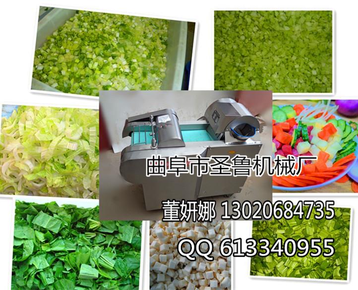叶类v叶类切菜机机械蔬菜加工蔬菜大型切菜机有限公司苏州控电气设备君图片