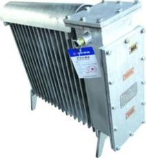RB-2000/127 A 煤矿用隔爆兼增安型电热取暖