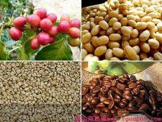 西安新鲜烘焙咖啡豆专卖