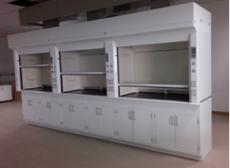 實驗室設備 貴州通風柜 重慶通風櫥