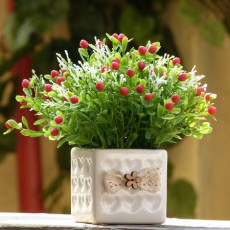 重庆园林养护 绿化养护花卉苗木销售